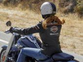 Alle motorkleding moet nu CE-gecertificeerd worden