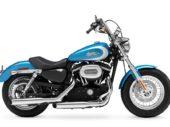 Bijzonder Harley-Davidson Custom