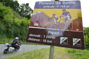 Pyreneeen - La Tour