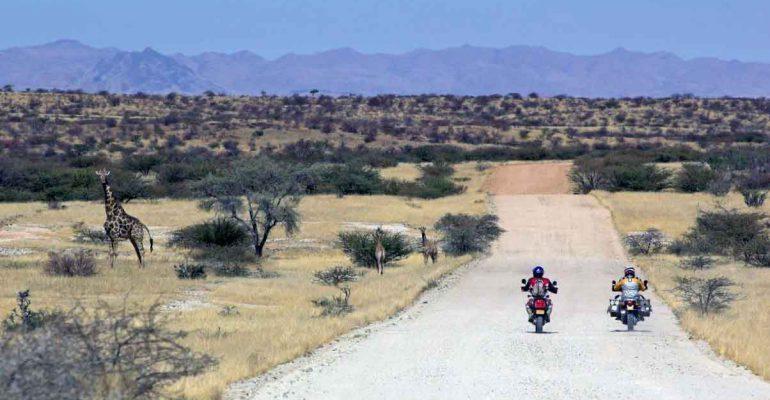 Namibië:Stof, wild en rotskunst