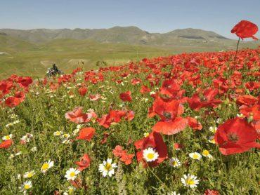 Noord-Italië: Sibillijnse Bergen