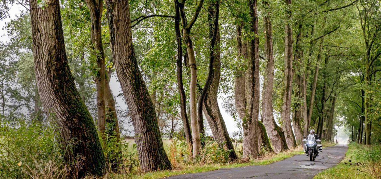 Motorroute Ost-Friesland