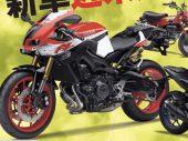 Is er een nieuwe Yamaha FZ750 in de maak?