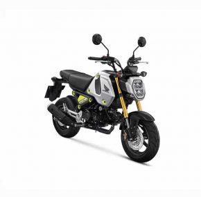 Honda MSX125 Grom: Rijdende gunfactor