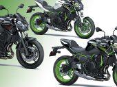 Dit kost de 2021 Kawasaki Z650