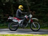 Moto Morini Camel 501 – Youngtimer