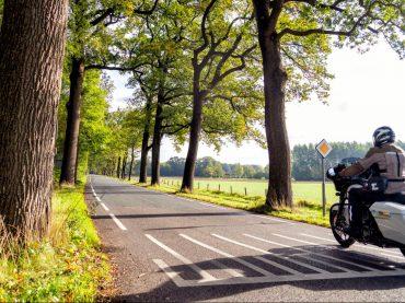 Salland: meer dan alleen die Holterberg (incl. route)