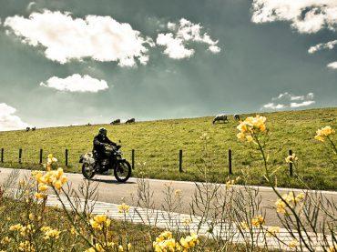Toerisme: voorjaarsrit door Zuidwest-Friesland